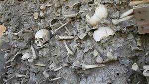 More Mexican mass graves discovered - KCW Today