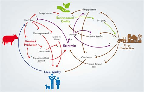 Food Loop Diagram by Research Systems Thinking Engineering