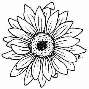 Gerber Daisy Drawing - ClipArt Best