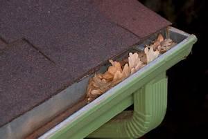 Dachlack Für Dachpappe : dachpappe streichen so geht 39 s ~ Orissabook.com Haus und Dekorationen