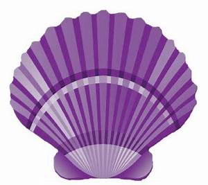 Purple Seashell Clipart (14+)