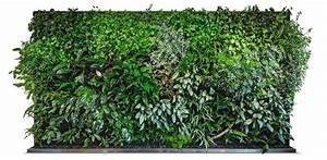 Grüne Wand Selber Bauen : florawall greentec innovation ag ~ Bigdaddyawards.com Haus und Dekorationen