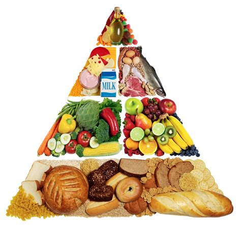 cuisine am駭ag馥s food waste wiki