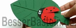 Basteln Sommer Grundschule : basteln mit kindern im fr hling marienk fer auf einem blatt ~ Frokenaadalensverden.com Haus und Dekorationen