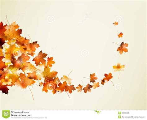 fall templates autumn background template eps 10 stock vector illustration of leaf flower 34665536