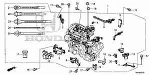 Engine Wire Harness For 2016 Honda Fit