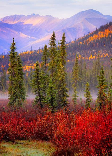 21 My idea of buying Alaska | alaska, rustic house, log homes