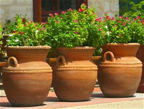 plante exterieur en pot sans entretien l du bien arroser pourquoi arroser