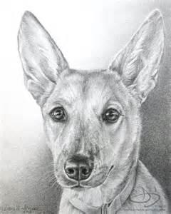 Dog Portrait Drawings