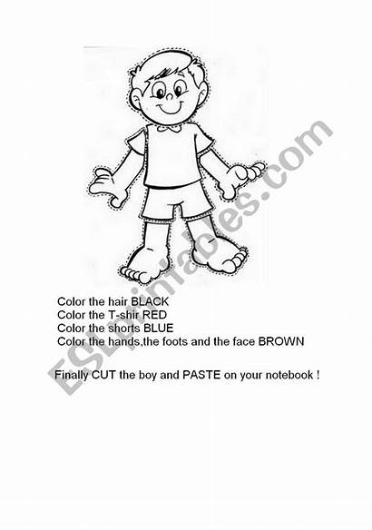 Coloring Parts Human Learning Face Colours Worksheet