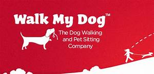 walk my dog the dog walking and pet sitting company With the dog walking company