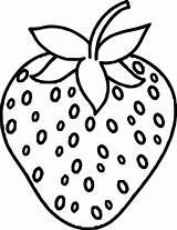 Strawberry Coloring Ingrahamrobotics Fruit sketch template