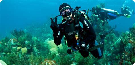 information  scuba diving  bermuda islands