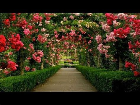 The Most Beautiful Gardens In Europe  Youtube