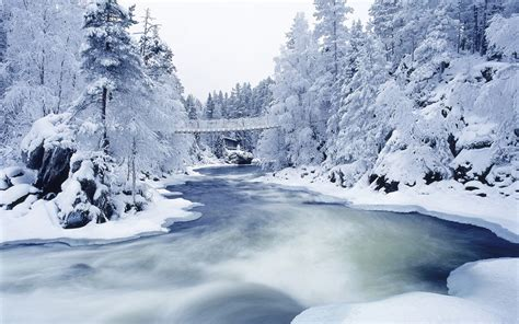 25 Beautiful Winter Wallpapers
