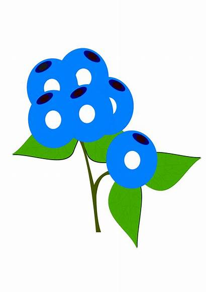 Blueberries Svg Clip Arts Icon