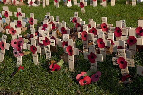 when did poppies become symbol of remembrance why do we wear red poppies on remembrance sunday and how to wear them uk news express co uk