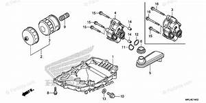 Honda Motorcycle 2018 Oem Parts Diagram For Oil Pan  Oil