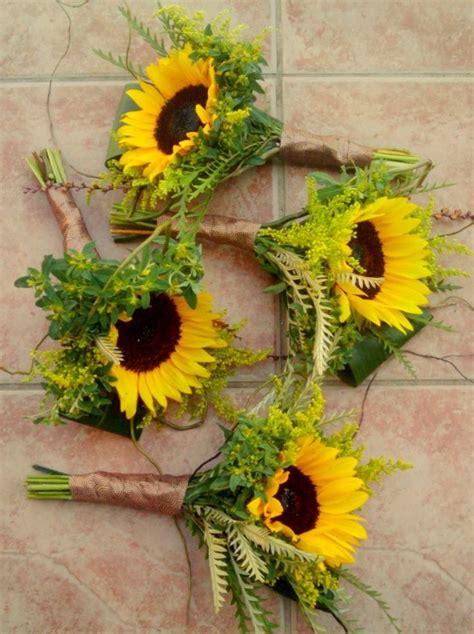single large sunflower  ferns  pretty