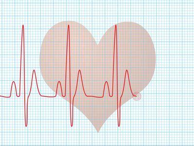 babys heart rate  pregnancy livestrongcom