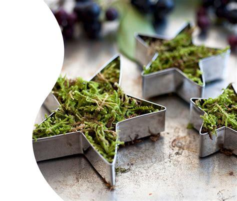 Tischdeko Weihnachten Naturmaterialien Tischdeko Zu
