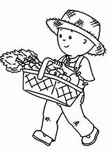 Coloring Harvest Caillou Carrot Coloringsun Sun Button Using Carrots Grab Welcome sketch template