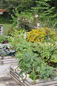 How, To, Enhance, Your, Garden, With, Gravel