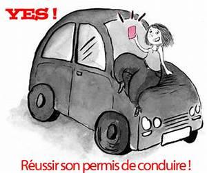Comment Faire Refaire Son Permis De Conduire : 3 cl s pour r ussir son permis de conduire le petit coach ~ Medecine-chirurgie-esthetiques.com Avis de Voitures