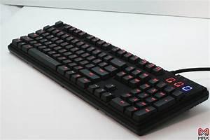 Max, Keyboard, Custom, Backlit, Mechanical, Keyboard, U2013, Max, Keyboards