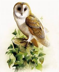 63 best Canvas paintings-Owls images on Pinterest | Owls ...