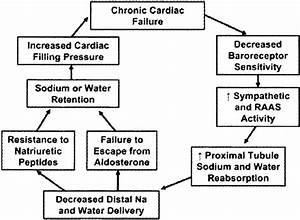 Pathophysiology Of Acute Decompensated Heart Failure   Reproduced With