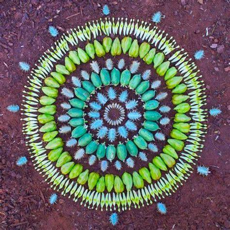 gazillion  petal  plant circle designs