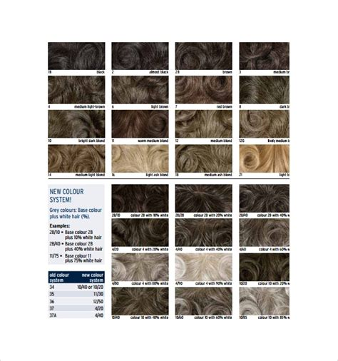 sample hair color chart  documents