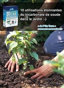 Bicarbonate De Soude Technique : 25 unique plant watering system ideas on pinterest drip ~ Dailycaller-alerts.com Idées de Décoration