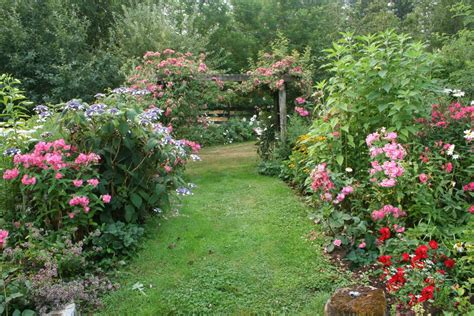 garden flowering plants flower garden paths images