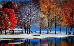 Nature, Landscape, Fall, Snow, Trees, Colorful, Water