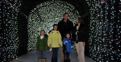 cincinnati zoo festival of lights 2010 ticket prices