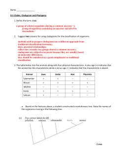 Cladogram Activity