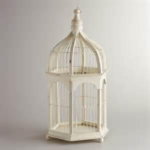 birdcages a hot decorative trend