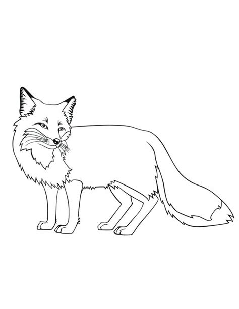 fox coloring pages free printable fox coloring pages for