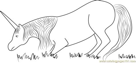 unicorn eating grass coloring page  unicorn coloring