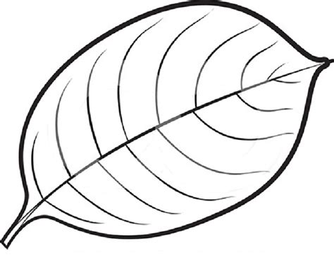 coloring pages leaves clipart