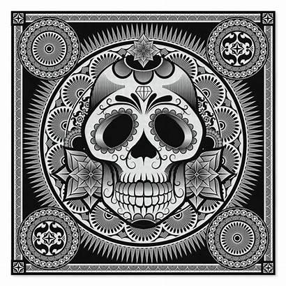 Bandana Skull Wholesale Patterns Bandanas Skulls Paisley