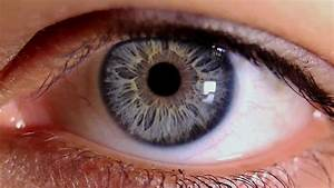 Macro Video Of Human Eye  U0026 Iris