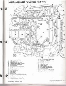 26 Optimax Fuel System Diagram