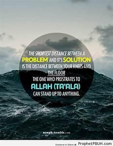 Tawakkul | Prop... Allah Tawakkul Quotes