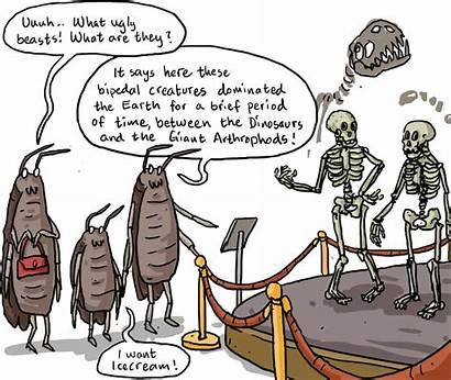 Evolution Topics Biology Apes Special Shmoop Discuss