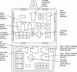 Diagram Of 1996 Ford Contour Engine  U2022 Downloaddescargar Com