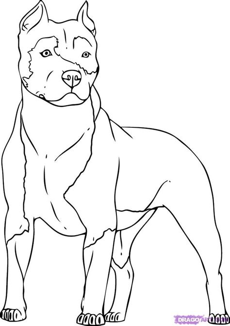dog coloring pages bing images dog patterns