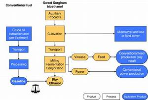 Basic Principle Of The Life Cycle Comparison Between Sweet Sorghum And